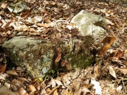 残る石垣 (3)