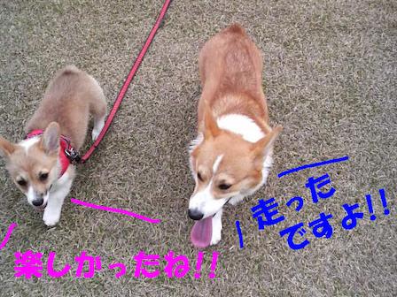 2人でお散歩3