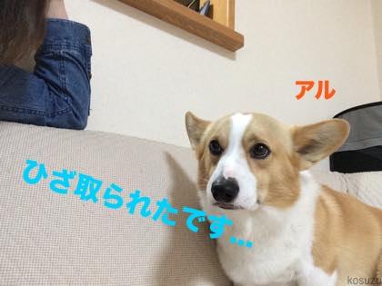 3_201504150825035c7.jpg