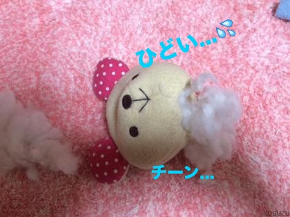 5_201504051101427a8.jpg