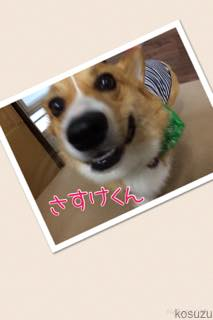th_IMG_5988.jpg