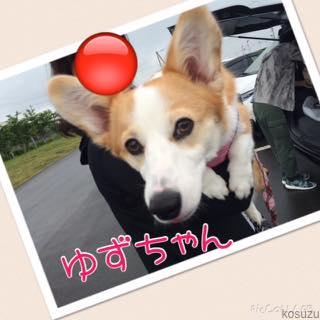 th_IMG_6044.jpg