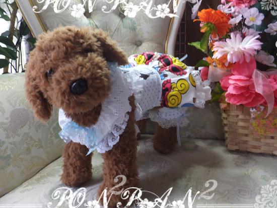 buro11_201505200646065bf.jpg