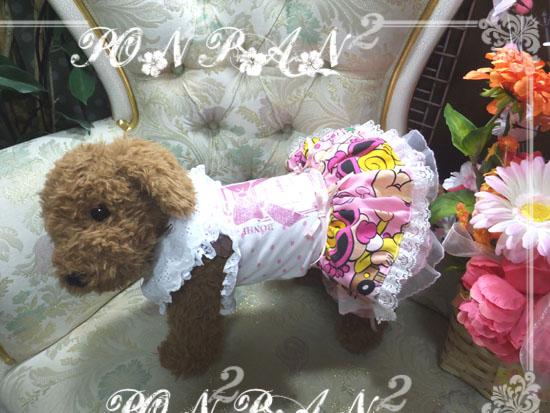 buro28_20150517093817257.jpg