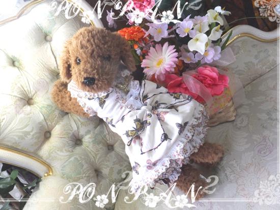 buro5_20150526060936e89.jpg