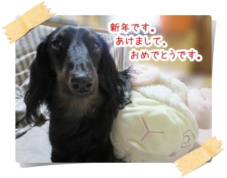 IMG_270101_1.jpg