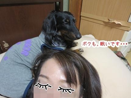 IMG_270130_2_1.jpg