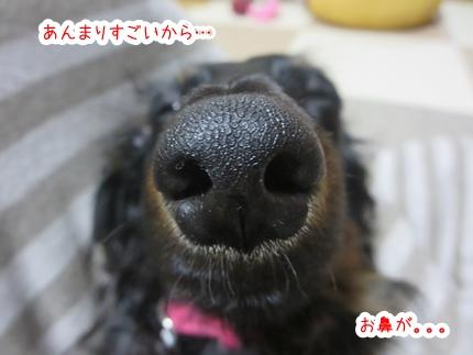 IMG_270414_2.jpg