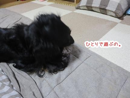 IMG_270428_3.jpg