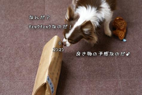 DSC018770320.jpg