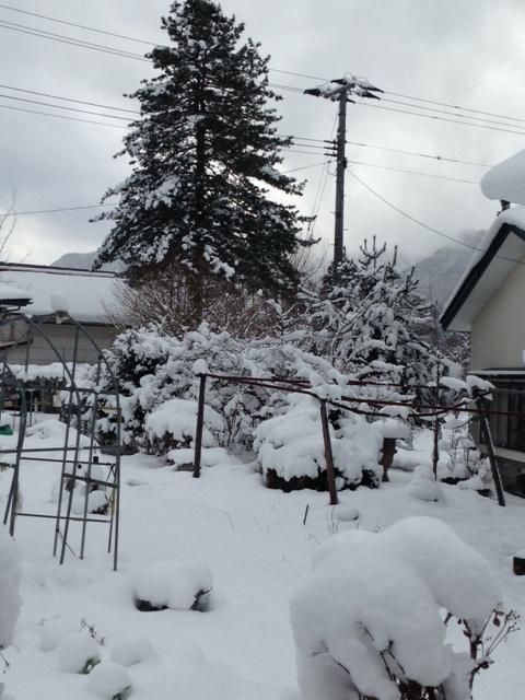 会津の冬 20141220画像