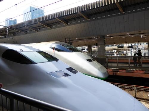 東京旅行2015春-013