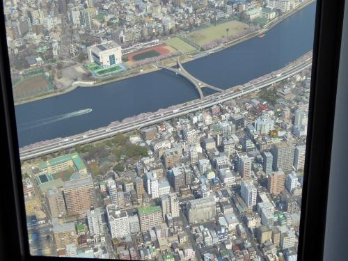 東京旅行2015春-078