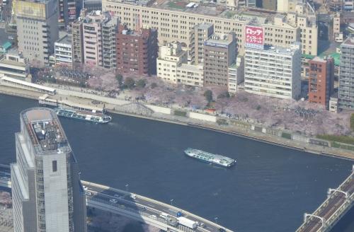 東京旅行2015春-083