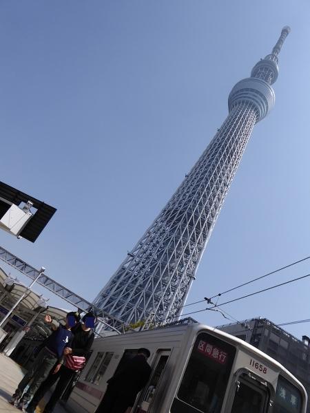 東京旅行2015春-100