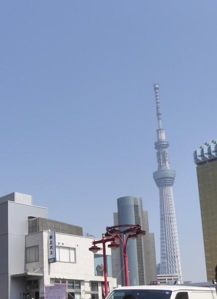 東京旅行2015春-103