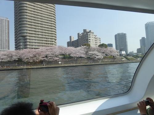 東京旅行2015春-119