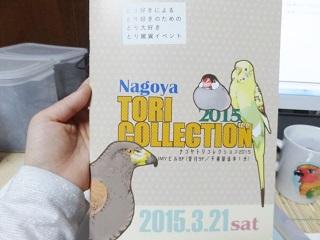 201503307.jpg