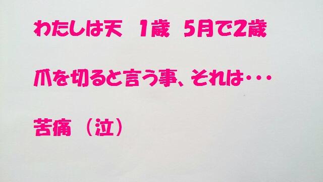 1422a.jpg