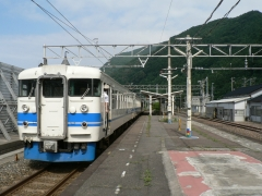 P1100901.jpg