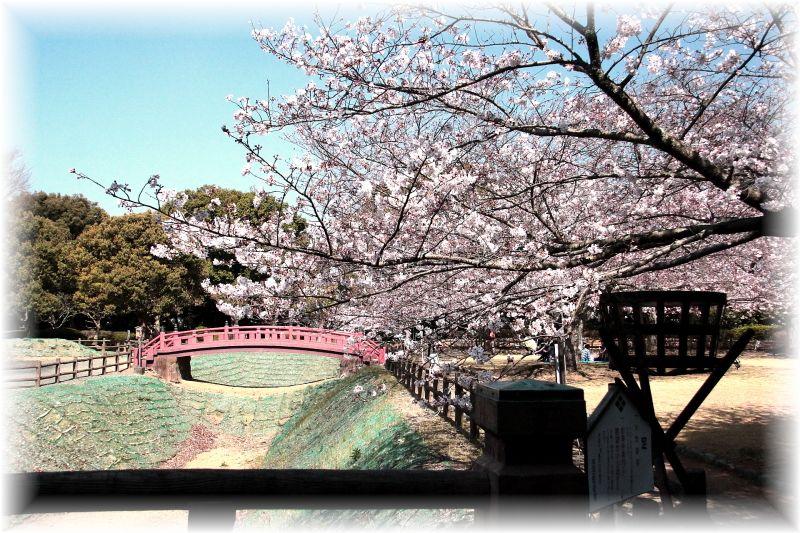 吉田町、小山城0093