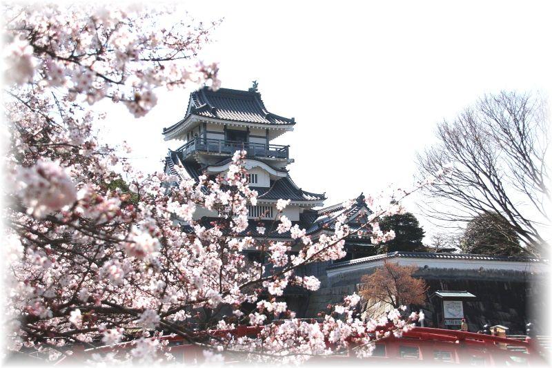 吉田町、小山城0099