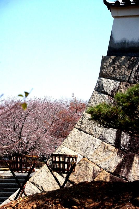 吉田町、小山城0103