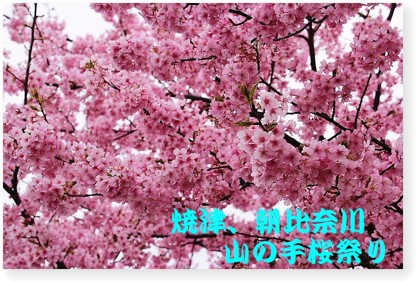 IMG_0010_201503031642426b5.jpg