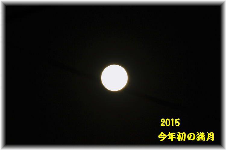 IMG_0014_20150106094337d5c.jpg