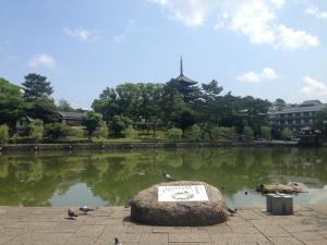 sarusawa0623_convert_20150623120224.jpg