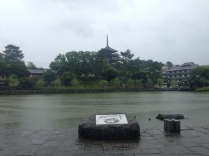 sarusawa0626_convert_20150626115753.jpg