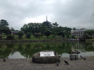 sarusawa0718_convert_20150718110422.jpg