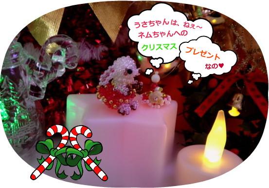 花ブ20141225-2