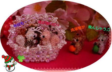 花ブ20150108-1
