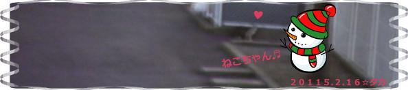 花ブ20150217-2