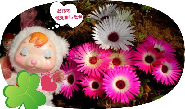 花ブ20150417ー2