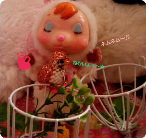 花ブ20150520-1