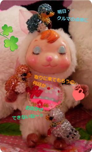 花ブ20150527-1