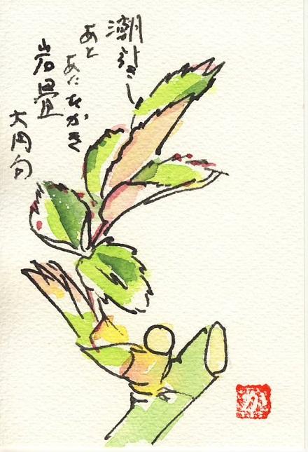 絵手紙バラの芽0001