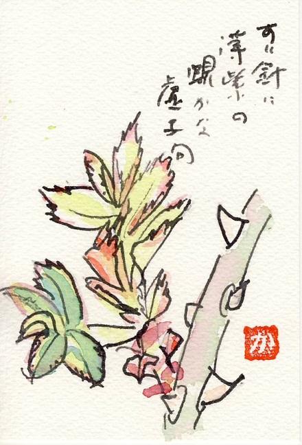 絵手紙バラの芽