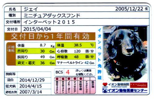 20154423b.jpg