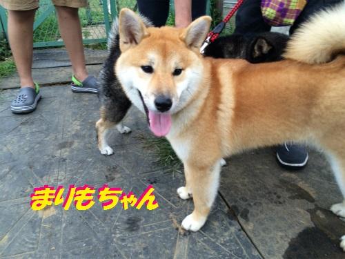 IMG_0361Blog.jpg