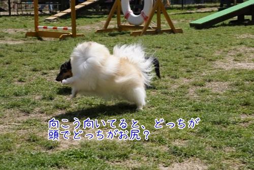 DSC07902.jpg