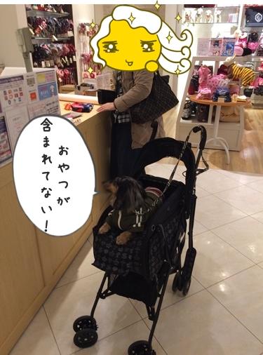 IMG_7660.jpg
