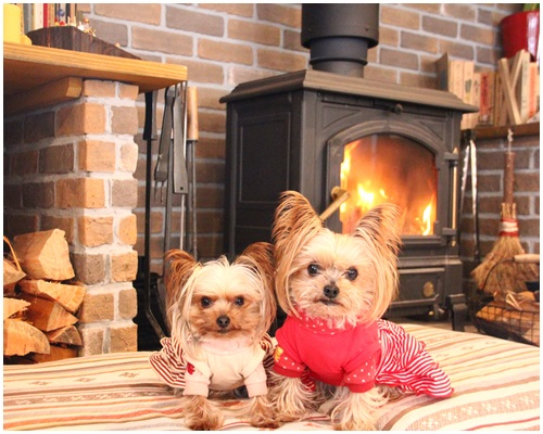 暖炉のクルココ