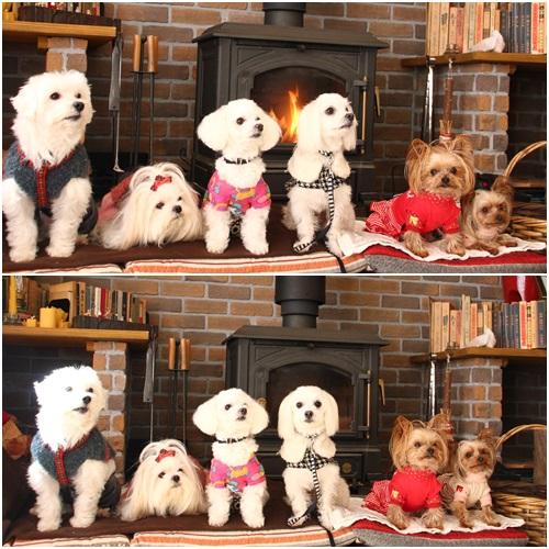 暖炉で集合写真
