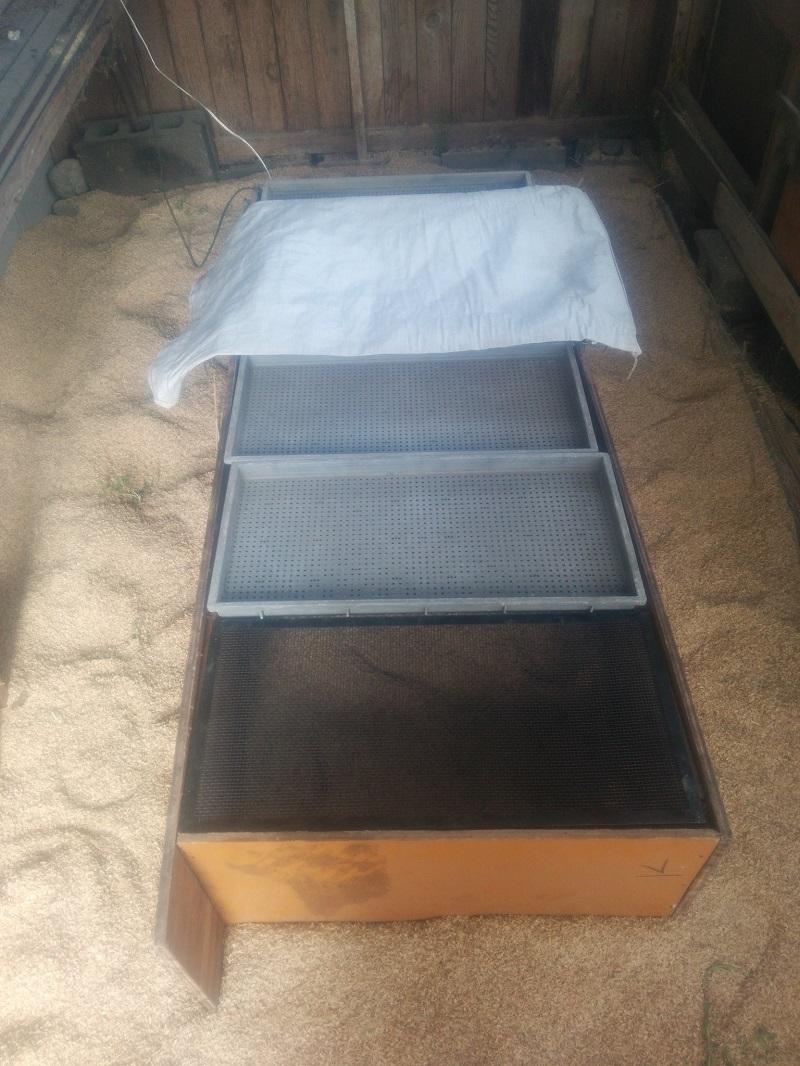 育すう箱150402-3