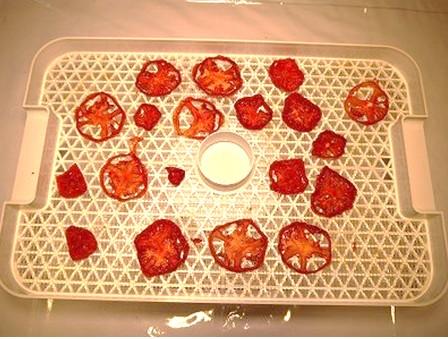 野菜乾燥機で12時間トマト乾燥