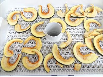 野菜乾燥器 24時間乾燥カボチャ
