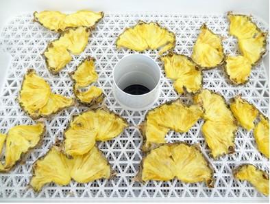 ドライフルーツメーカーで18時間乾燥のパイナップル
